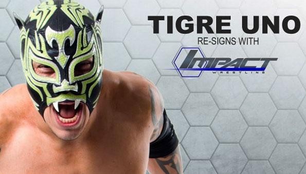 Tigre Uno