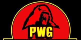 PWG BOLA 2016