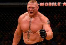 Brock Lesnar fine