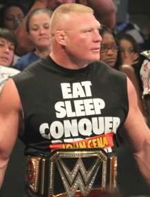 Will WWE Stars Return To UFC