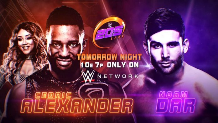 WWE 205 Live Preview