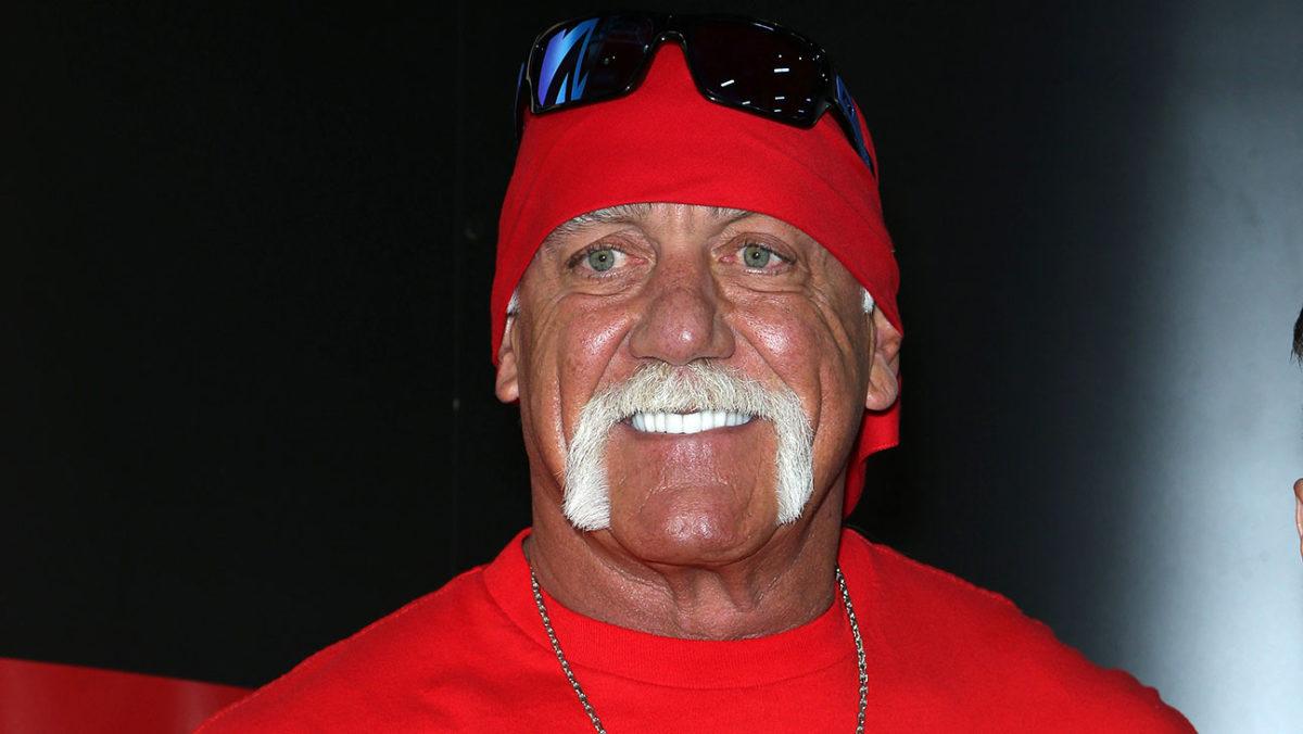 Hulk Dichiarazione Di Hogan