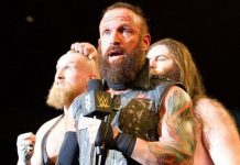 Sanity during their tenure in NXT
