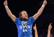 Daniel bryan out of survivor series elimination