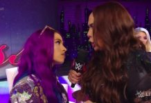 Sasha Banks facing Ronda Rousey at Royal Rumble