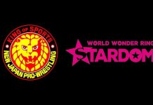 NJPW parent company purchases Stardom