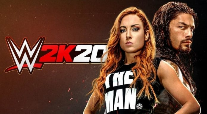WWE 2K20 issues
