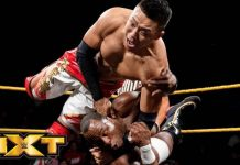 NXT star Boa undergoes surgery for torn labrum and rotator cuff