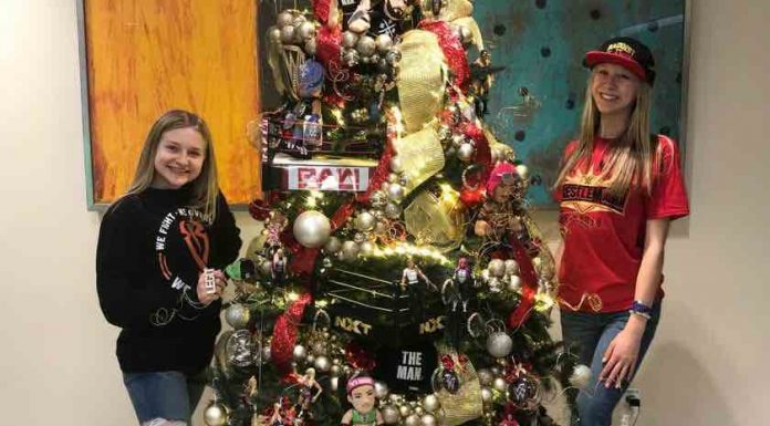 WWE-themed Christmas tree for pediatric cancer patients