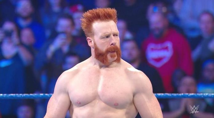 Sheamus to serve as honorary pace car driver for 62nd Daytona 500