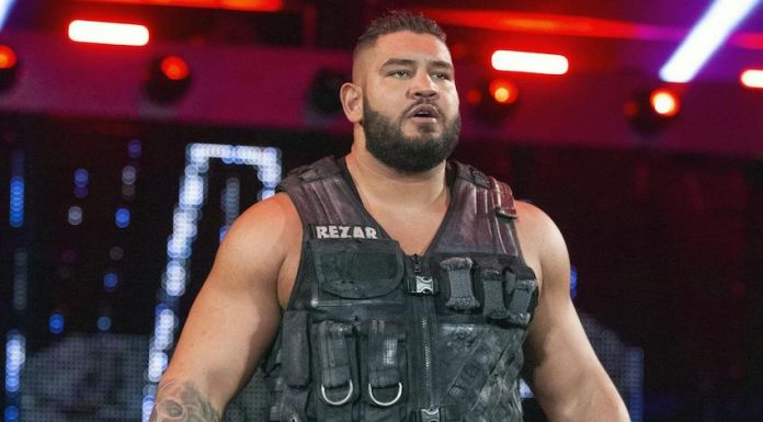Rezar of the Authors of Pain suffers arm injury Monday's Raw