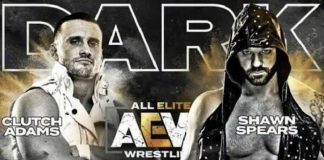 Match removed from AEW Dark due to wrestler's racist and homophobic slurs