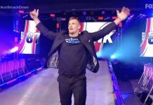 Rob Gronkowski reportedly gone from WWE