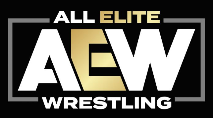 Fans in attendance at AEW