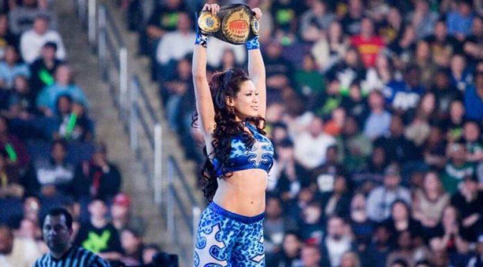 Melina Perez not resigned with WWE
