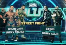 Sting returns to in-ring action next month