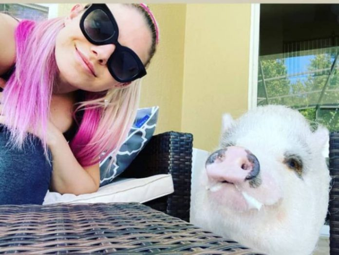 Alexa Bliss thanks fans for their support following the death of her pig