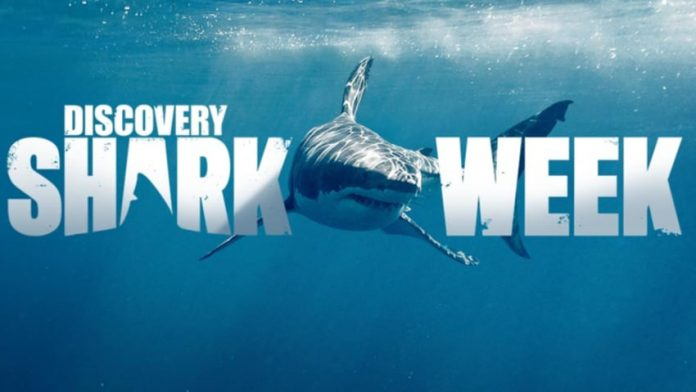 WWE Raw Superstar to appear on Discovery's Shark Week