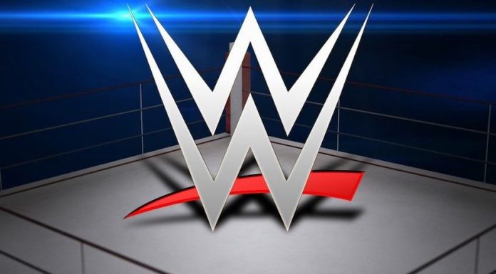 Several WWE Executives cash in on company stock